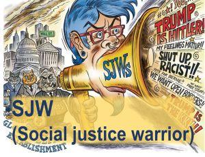 SJW (Social justice warrior) image