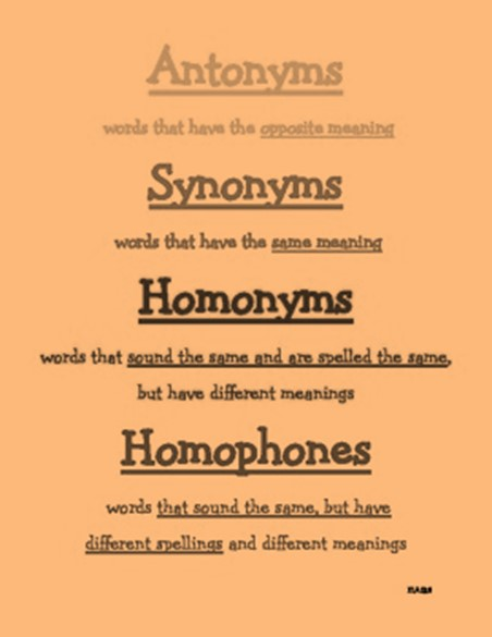 Class 9: Synonyms, Antonyms, Homonyms, words related to