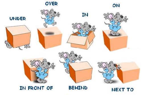 class 5 prepositions english square