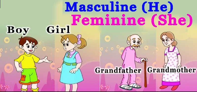 Making Words Feminine & Masculine